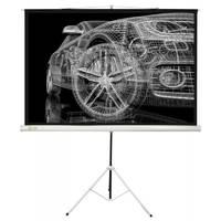 Экран Cactus 124.5x221см Triscreen CS-PST-124x221 16:9 напольный рулонный белый
